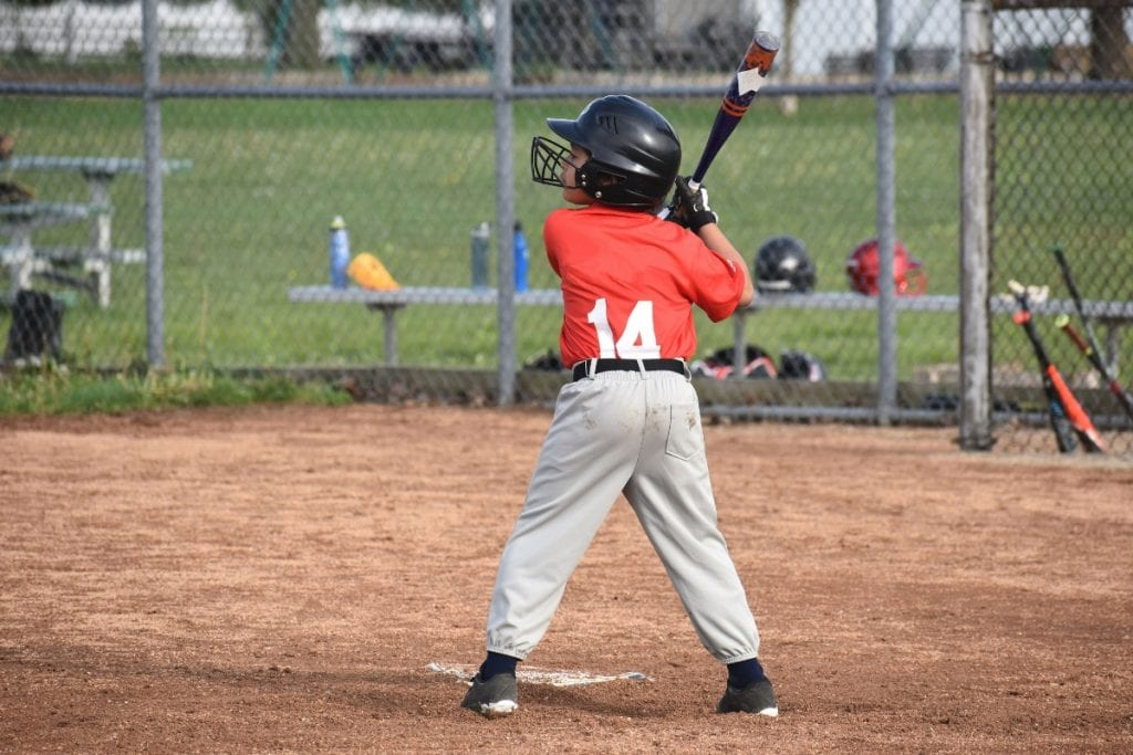 Windsor Warriors Baseball Camp image