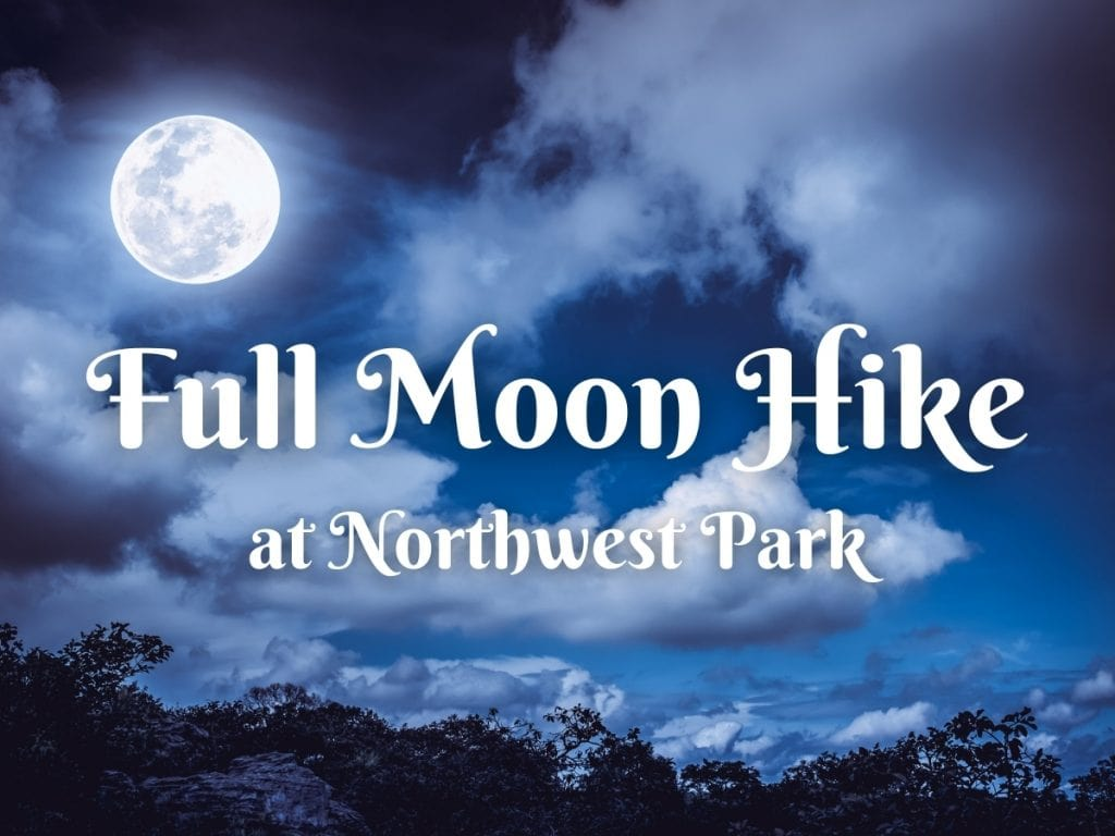 Full Moon Hikes image