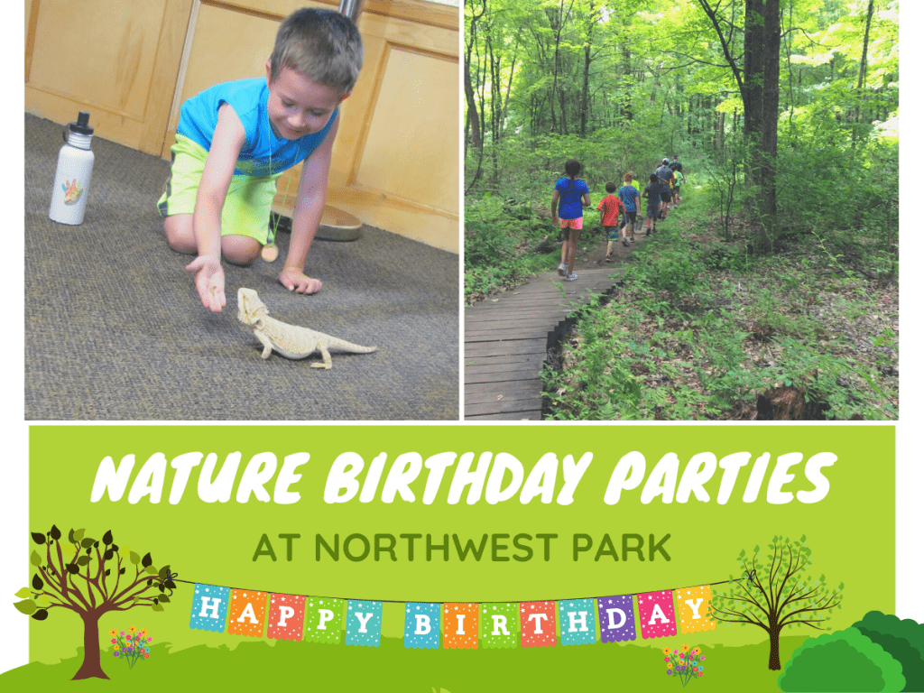 Nature Birthday Parties at Northwest Park image