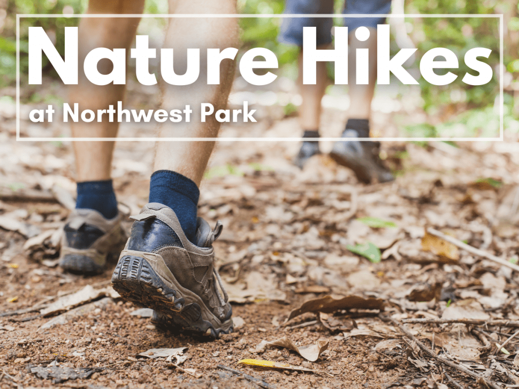 Nature Hikes at NWP image