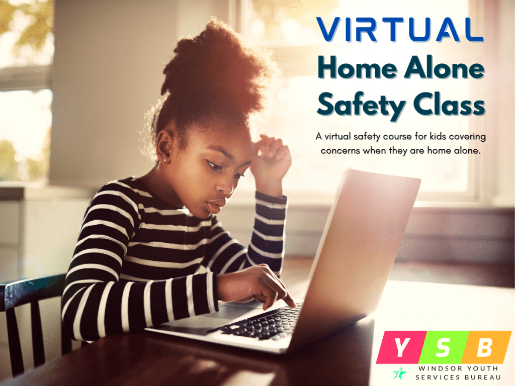 Virtual Home Alone Safety image