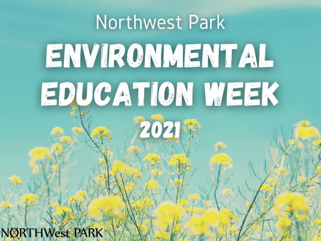 Environmental Education Week image